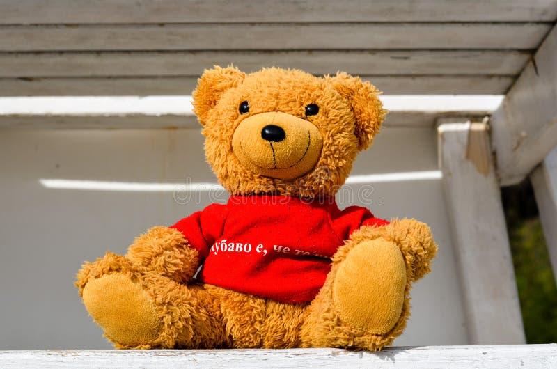 Плюшевый медвежонок на станции личной охраны в солнечном дне стоковые фото