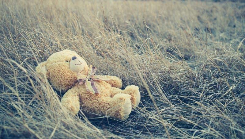 Плюшевый медвежонок на траве стоковая фотография rf