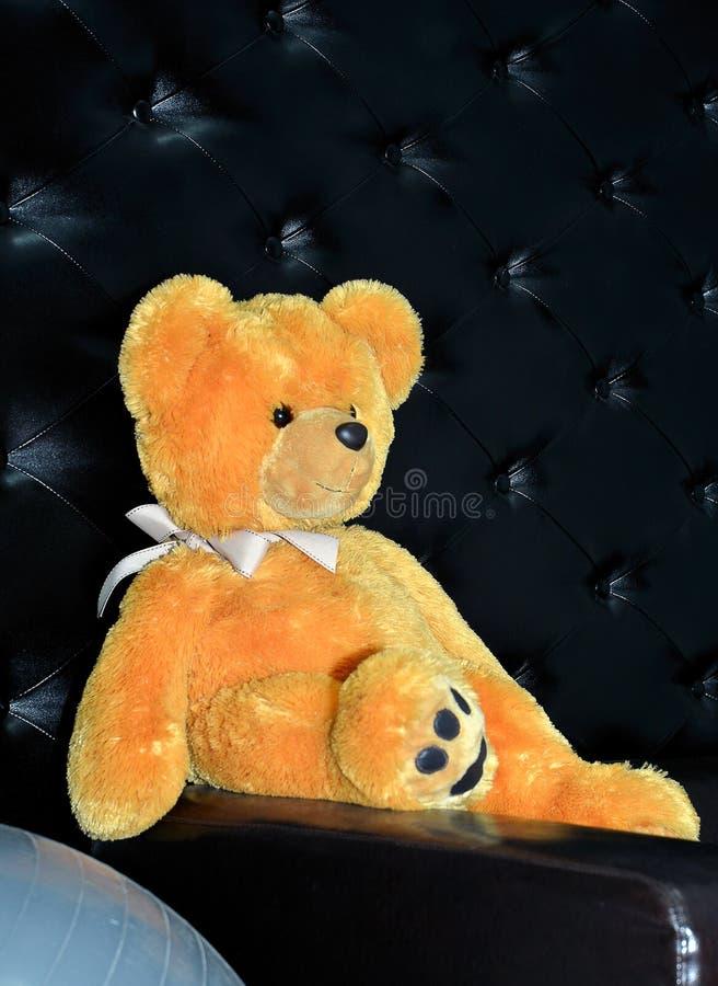 Плюшевый медвежонок с смычком стоковые изображения rf