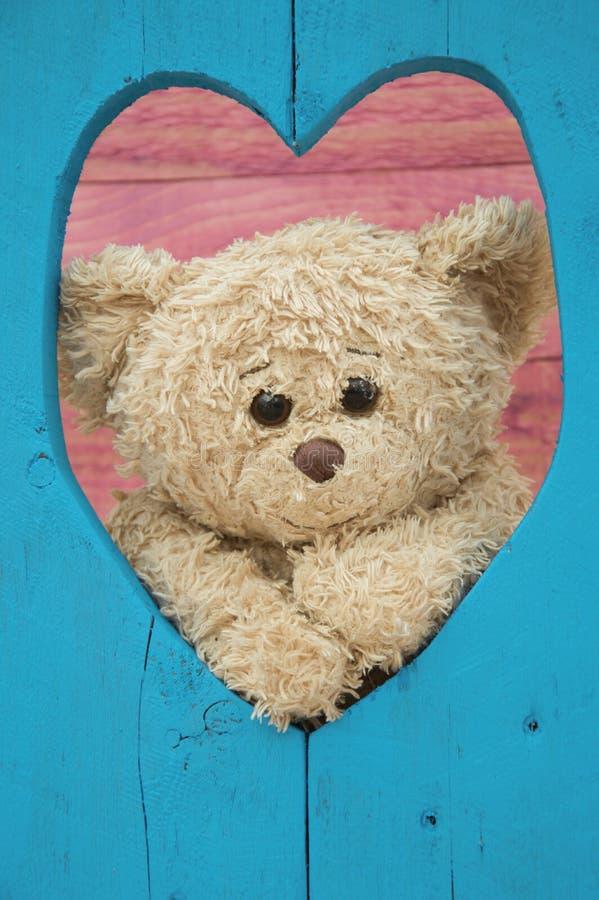 Плюшевый медвежонок через деревянное сердце влюбленности стоковая фотография