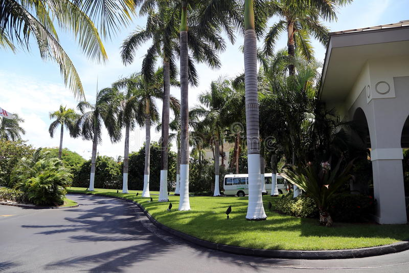 Пляжный комплекс Marriott Кеймана Grand Cayman Island_Grand на 7 милях пляжа в Джорджтауне стоковое изображение