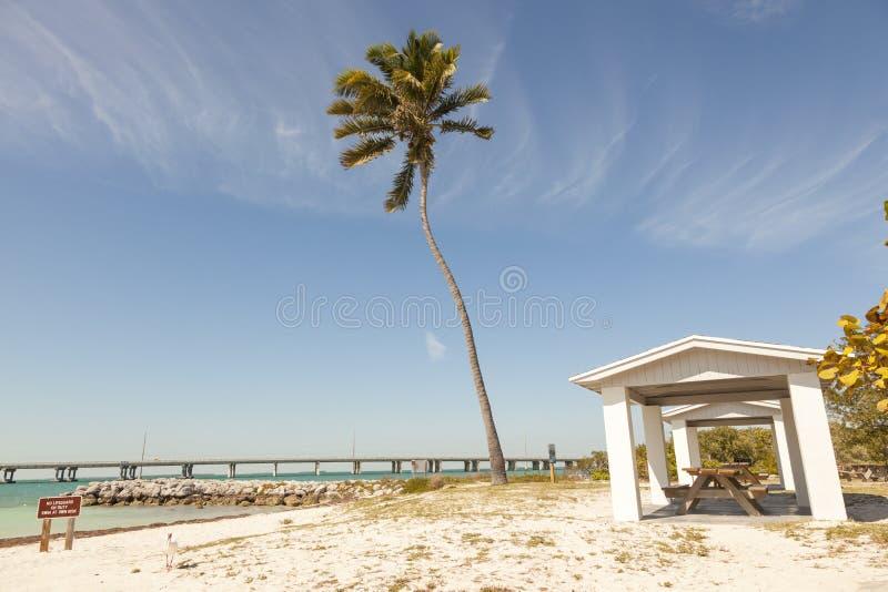 Пляж Бахи Honda, ключи Флориды стоковые изображения rf