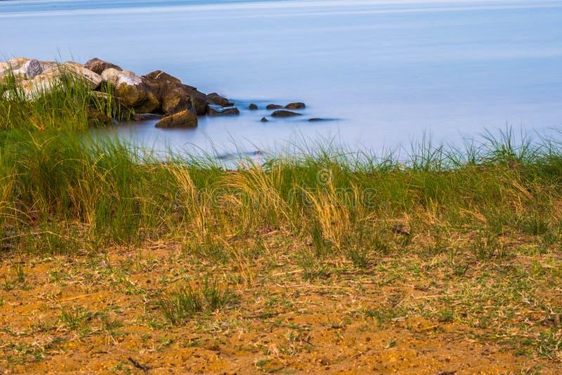 Пляж & бечевник стоковое фото rf