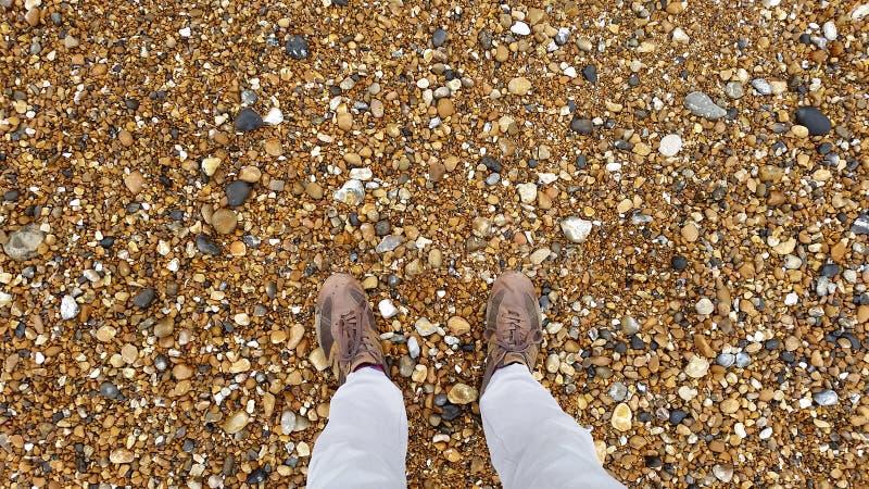 Пляж Брайтона стоковое фото rf