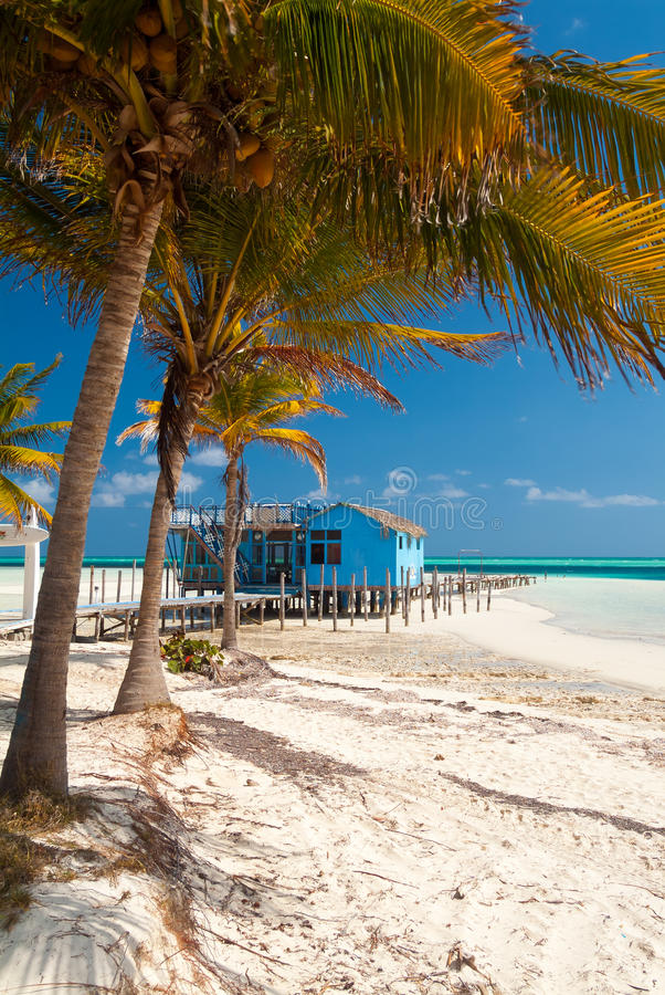 Пляж Варадеро стоковое фото rf