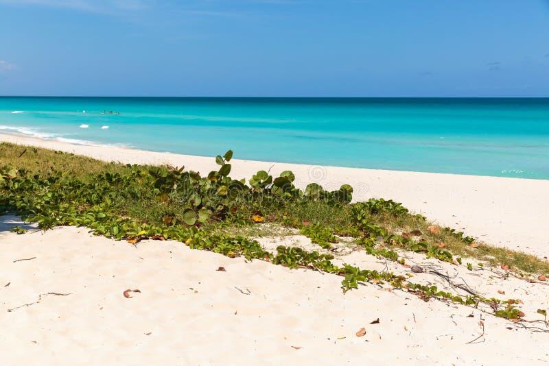 Пляж Варадеро стоковое изображение