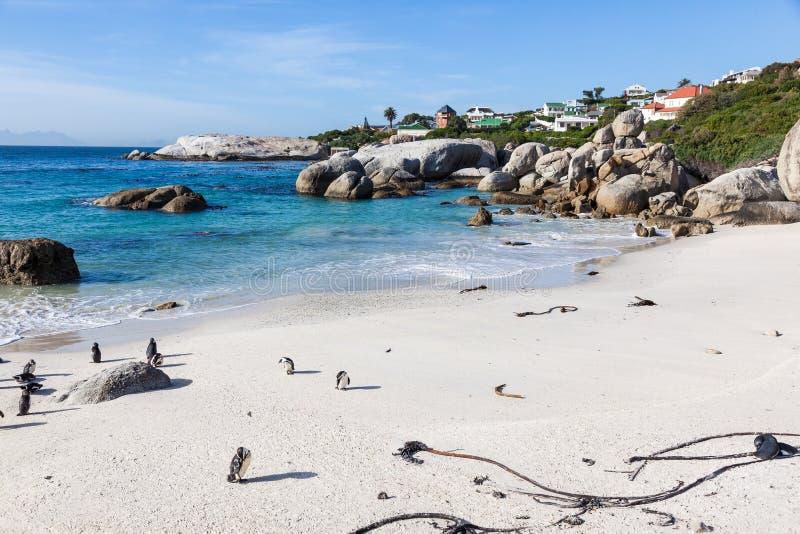 Пляж валунов стоковое фото rf