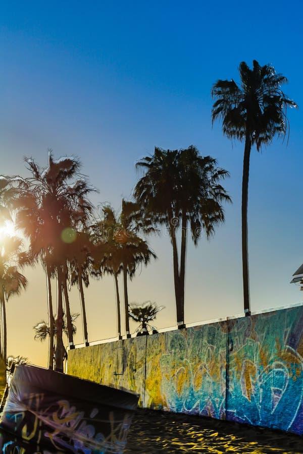 Пляж Венеции стоковая фотография