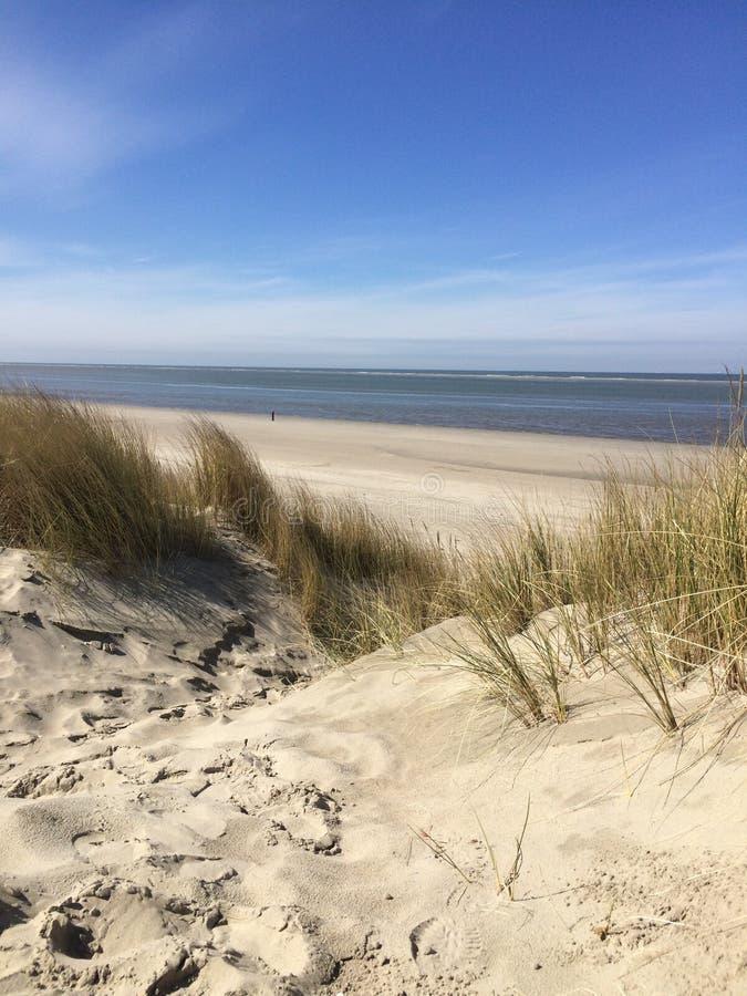Пляж Голландии стоковые фотографии rf