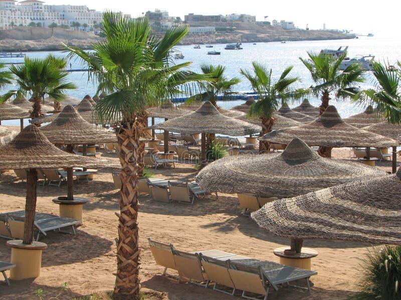 пляж Египет Пляж курорта стоковая фотография