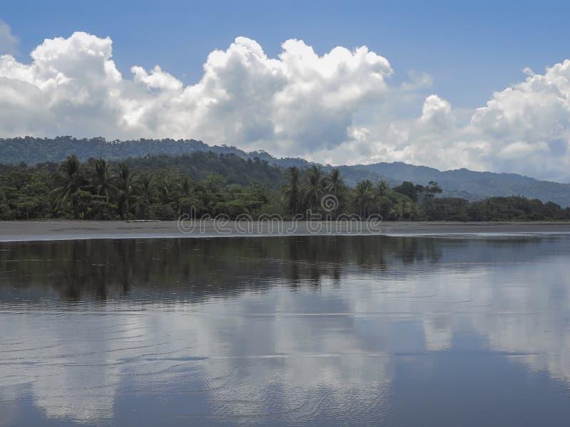 Пляж джунглей в Коста-Рика стоковое фото rf