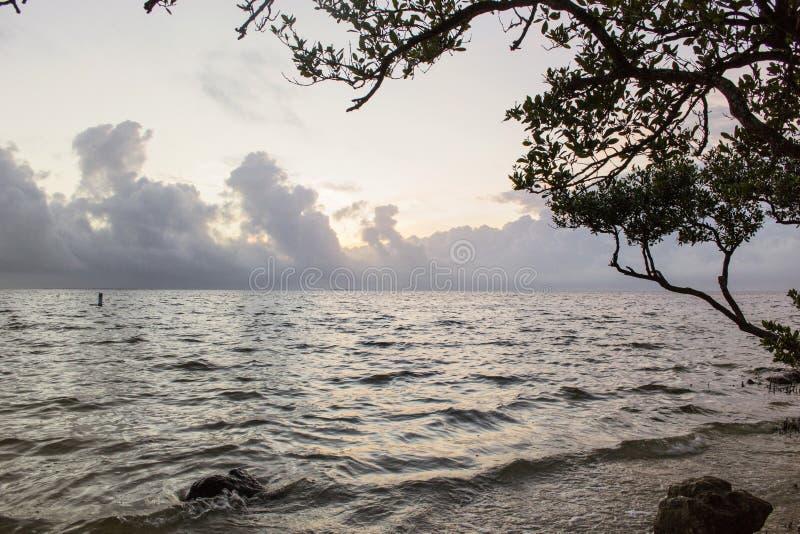 Пляж захода солнца, Флорида стоковое фото