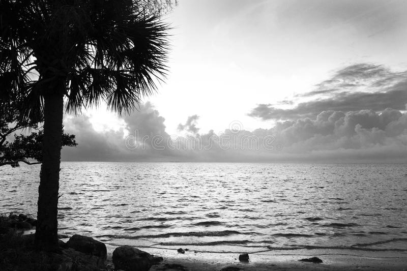 Пляж захода солнца, Флорида стоковое фото rf