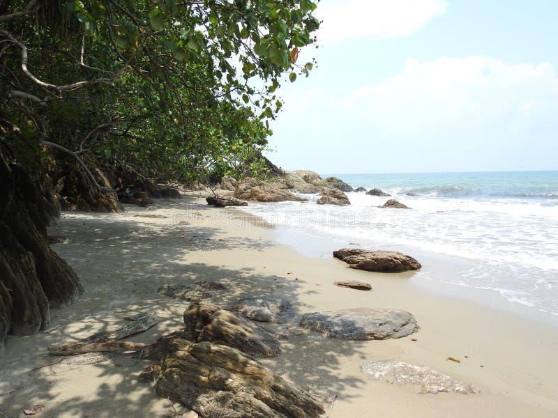Пляж залива вихря стоковая фотография rf