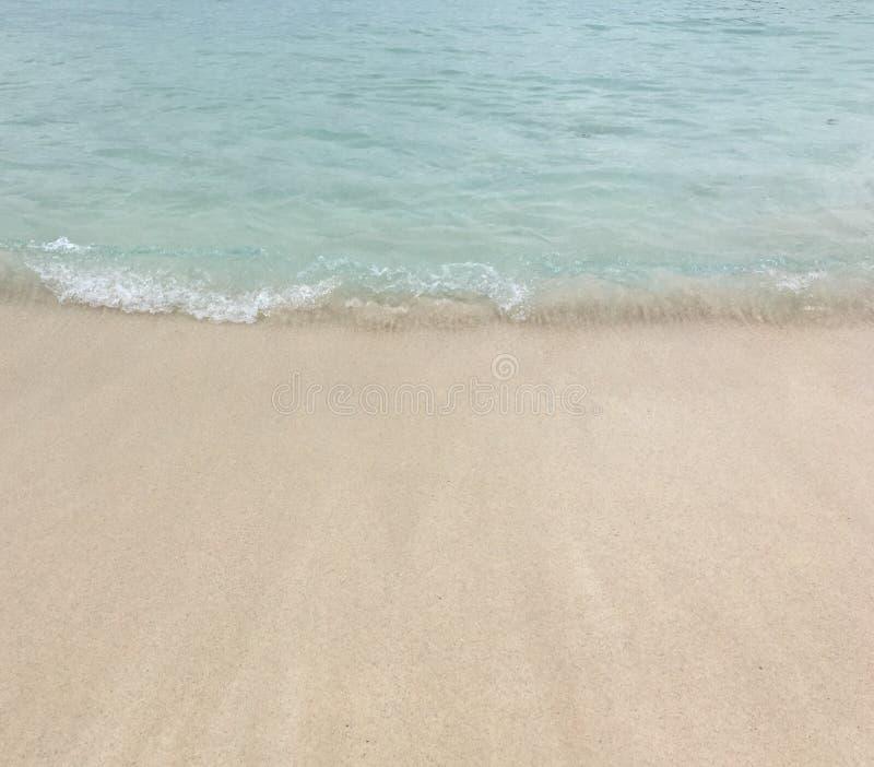Пляж залива хобота стоковые фотографии rf