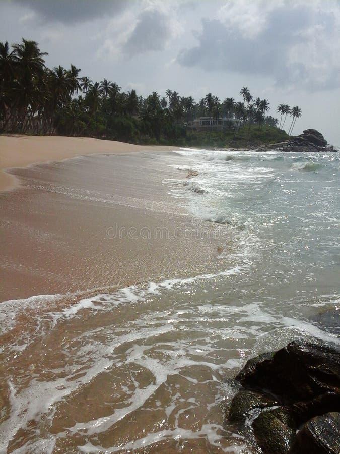 Пляж и восход солнца стоковое фото rf