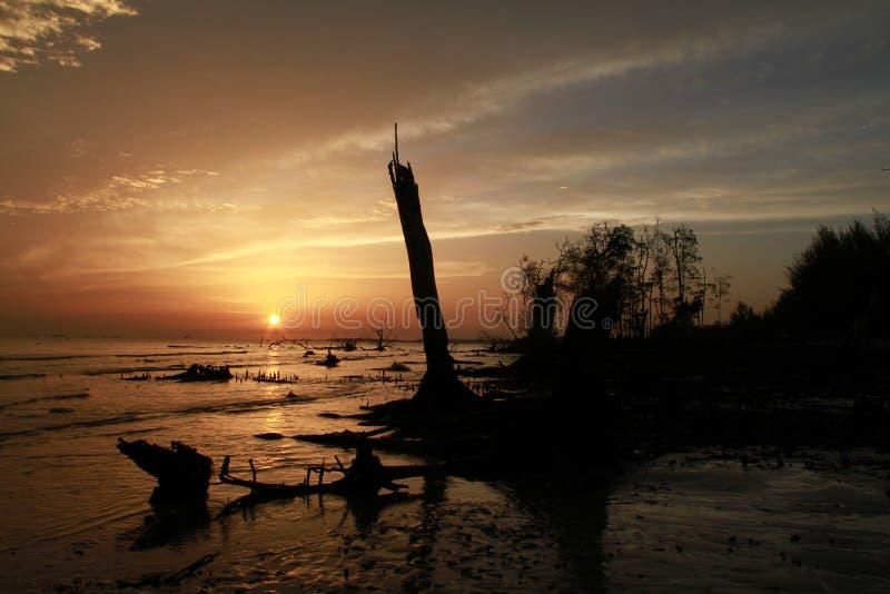 Пляж и небо захода солнца стоковое фото