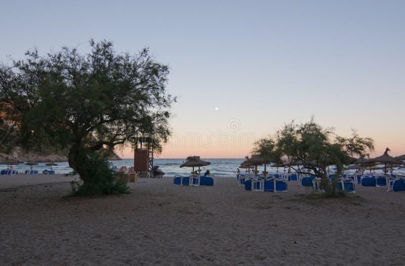 Пляж и полнолуние парасоля стоковые фото