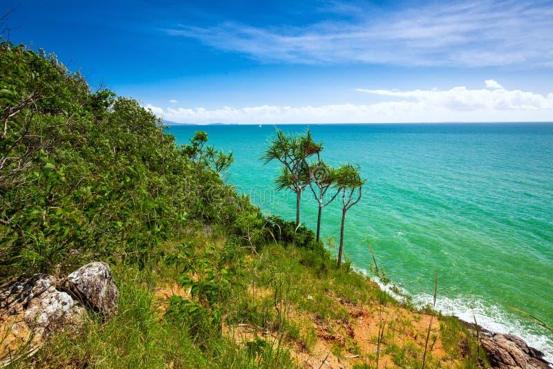 Пляж и тропическая вегетация от бдительности, Port Douglas стоковые изображения rf