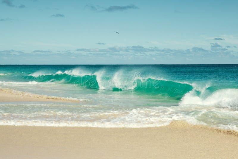 Пляж Кабо-Верде стоковые изображения rf