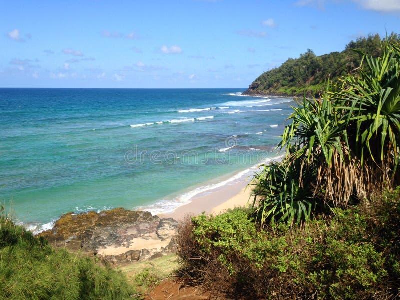 Пляж Кауаи стоковая фотография rf