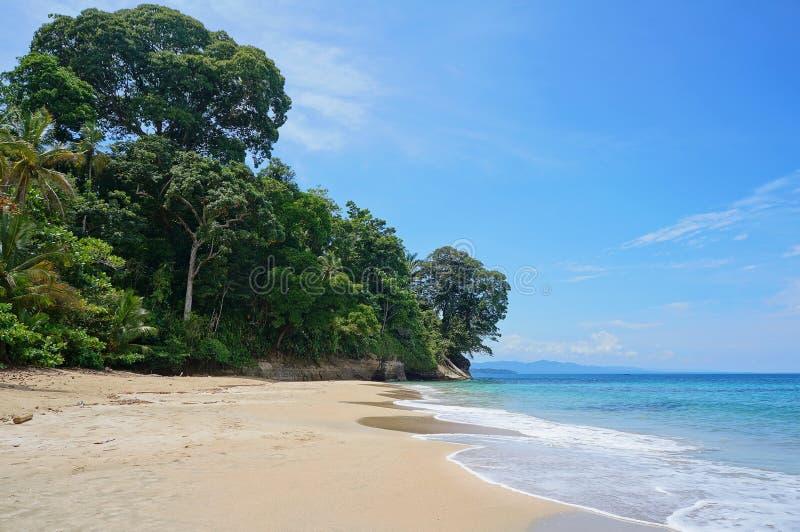 Пляж Коста-Рика карибский с пышной растительностью стоковые изображения