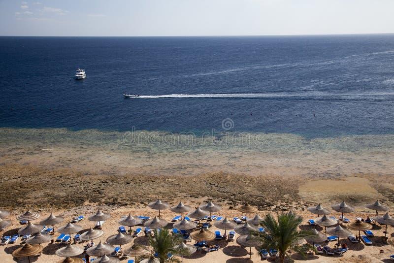 Пляж курорта с rief коралла стоковые изображения rf