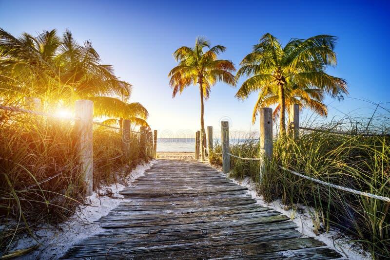 пляж к путю стоковые фото