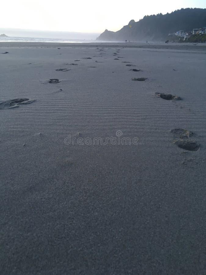 Пляж Линкольна стоковые фотографии rf