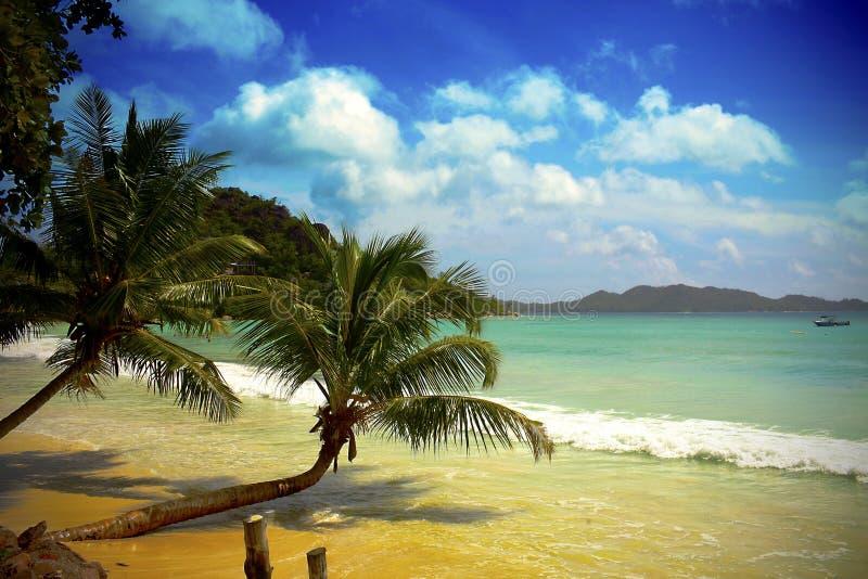 Пляж Маврикия стоковое изображение