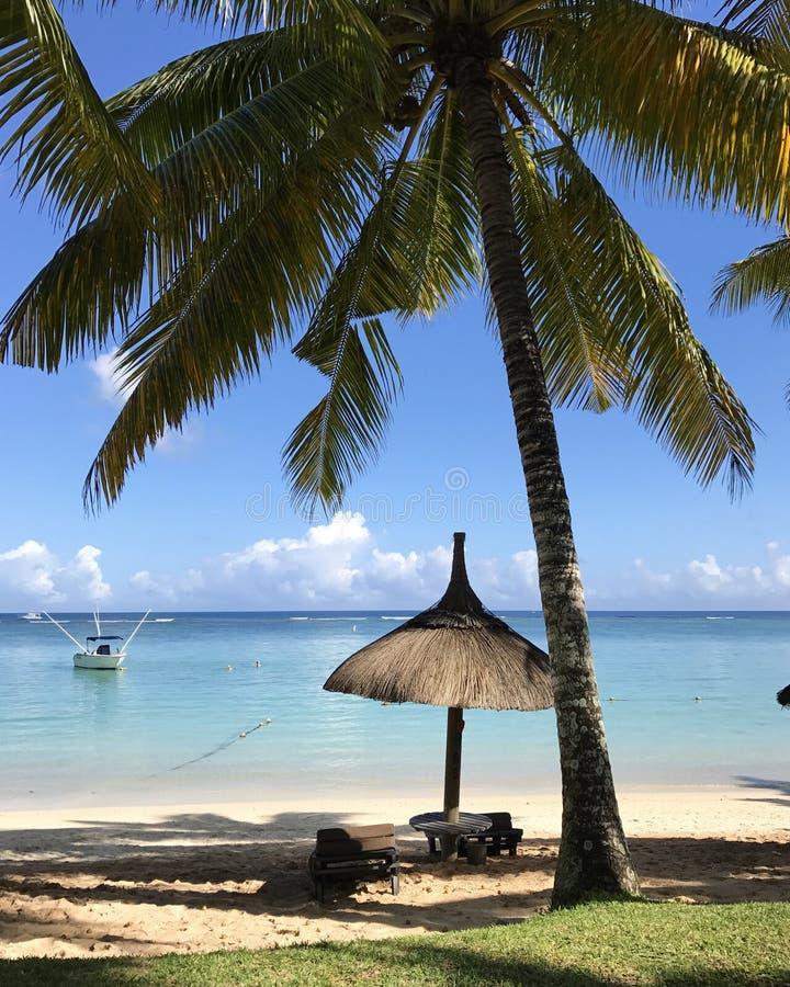 Пляж Маврикия стоковое фото