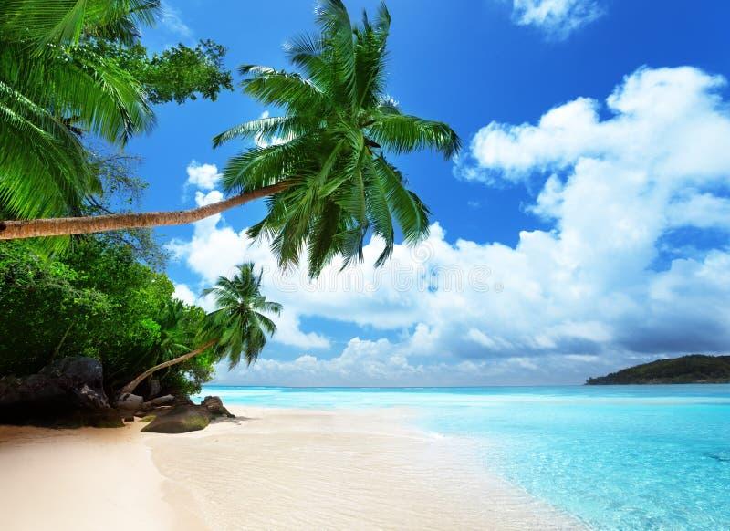Пляж на острове Mahe стоковое изображение rf