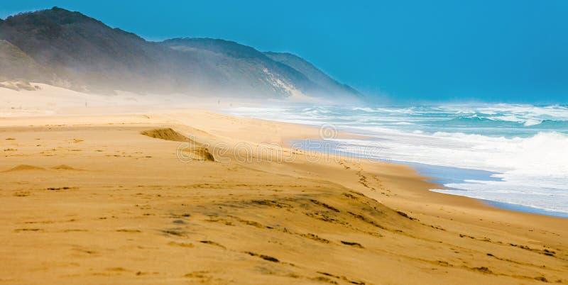 Пляж на iSimangaliso-Заболоченное место-парке стоковые фото