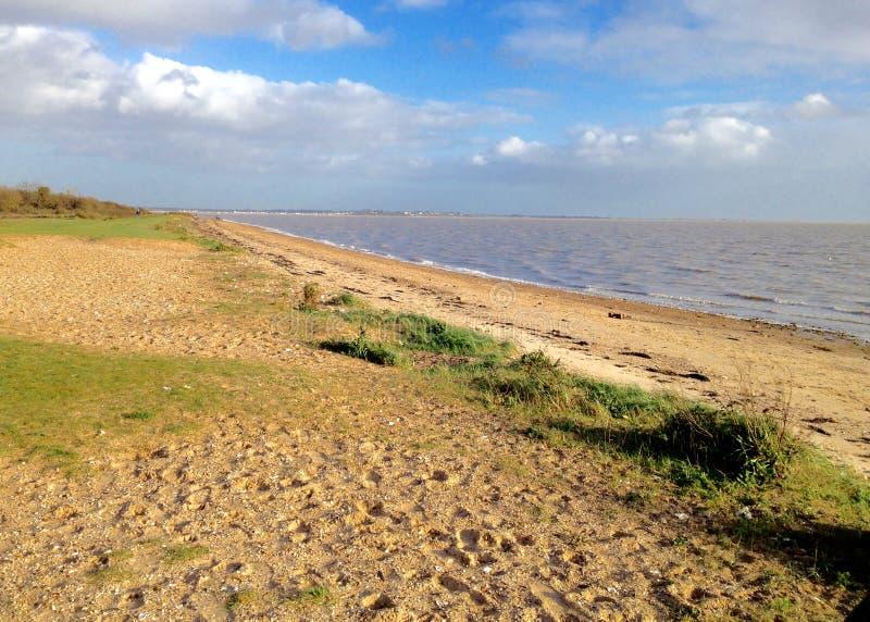 Пляж острова Mersea, Англия, Великобритания стоковые изображения rf