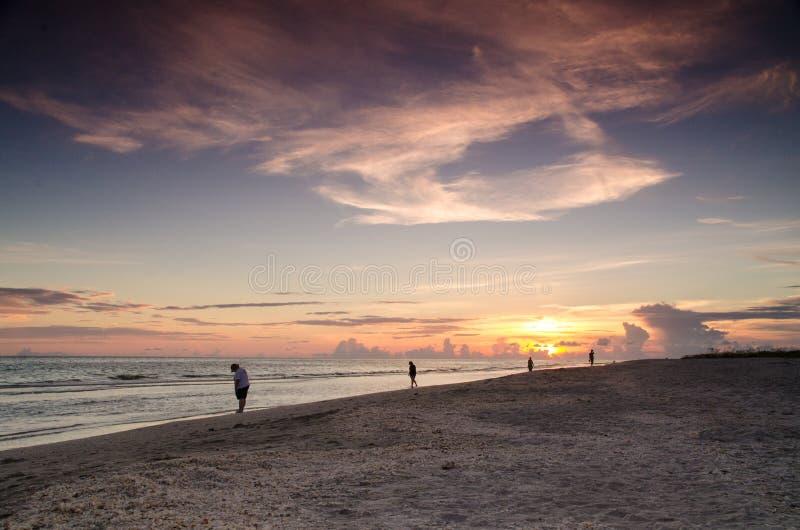 Пляж острова Sanibel стоковые фотографии rf