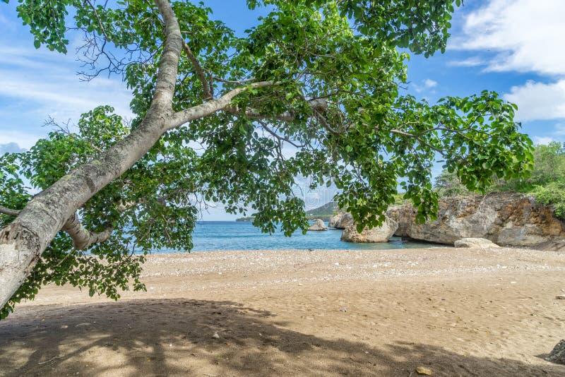 Пляж отработанных формовочных смесей - взгляды Curacao стоковая фотография