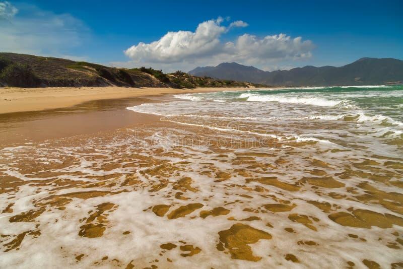 Пляж песка, длинный путь в дюне стоковая фотография rf