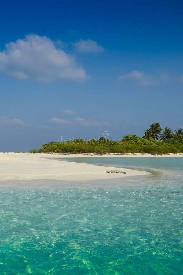 Песчаный пляж белизны пустыни стоковое изображение