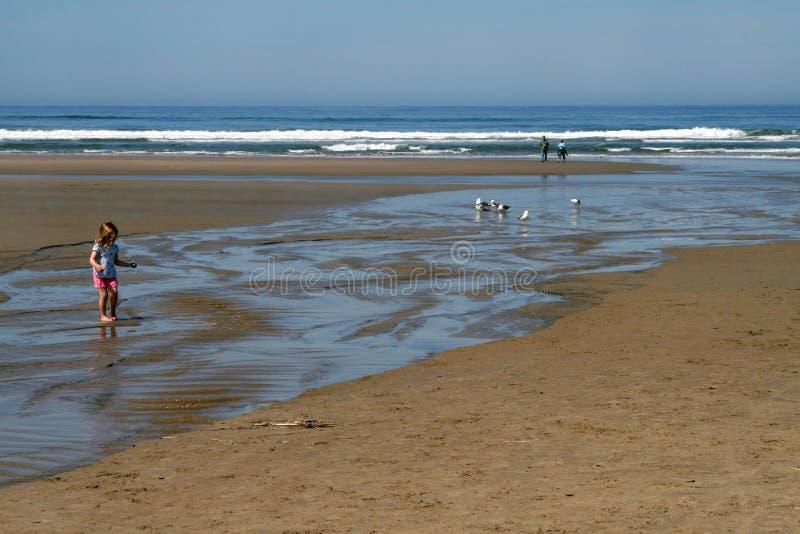Пляж, побережье Орегона стоковое фото rf