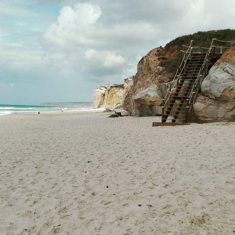 Пляж пустыни стоковое изображение rf