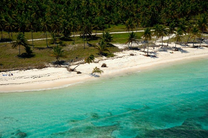 Пляж рая сверху стоковое фото