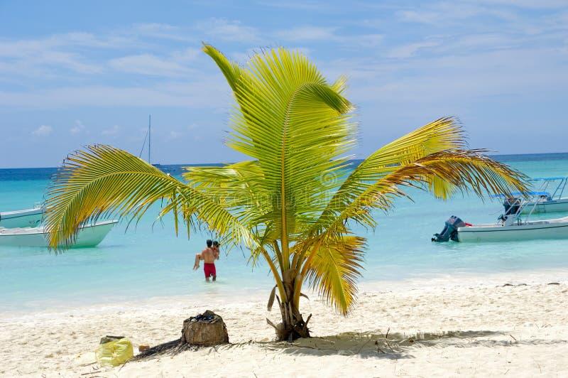Пляж рая стоковые изображения rf