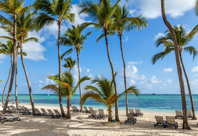 Пляж роскошного курорта в Punta Cana стоковые изображения