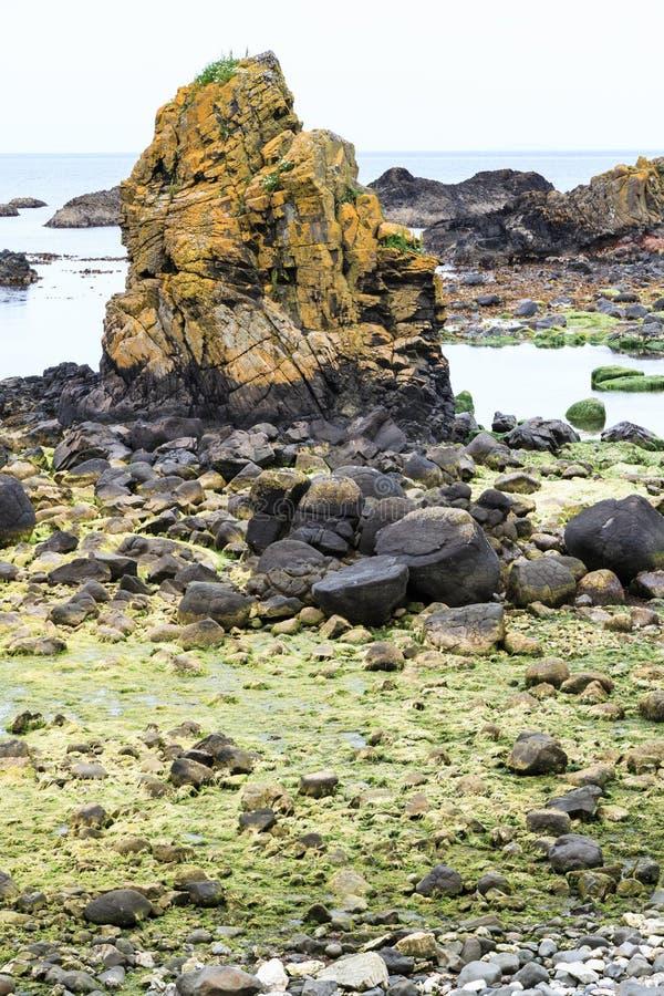 Пляж Северной Ирландии стоковые фотографии rf