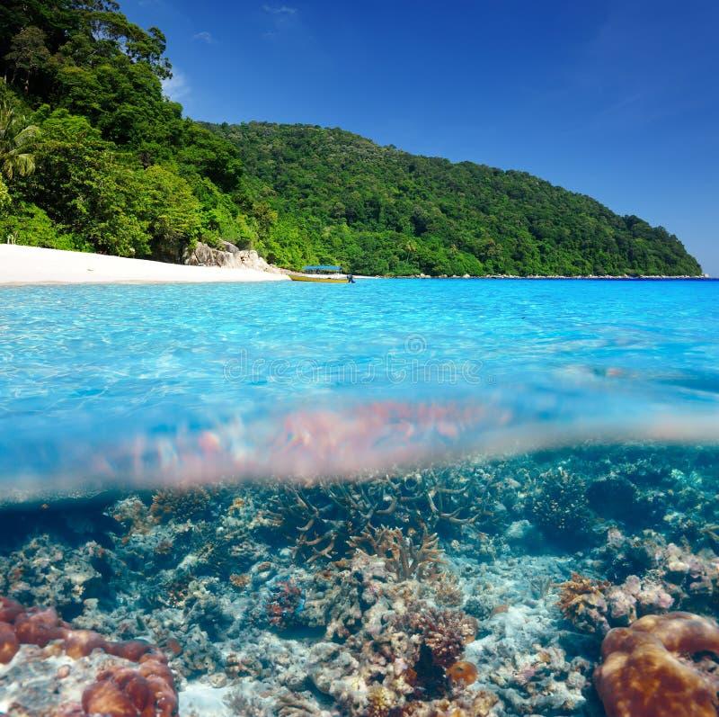 Пляж с взглядом кораллового рифа подводным стоковая фотография rf