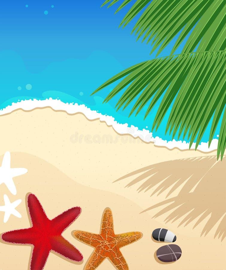 Пляж с морскими звёздами иллюстрация штока