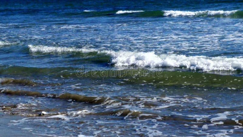 Пляж с цацей стоковые изображения