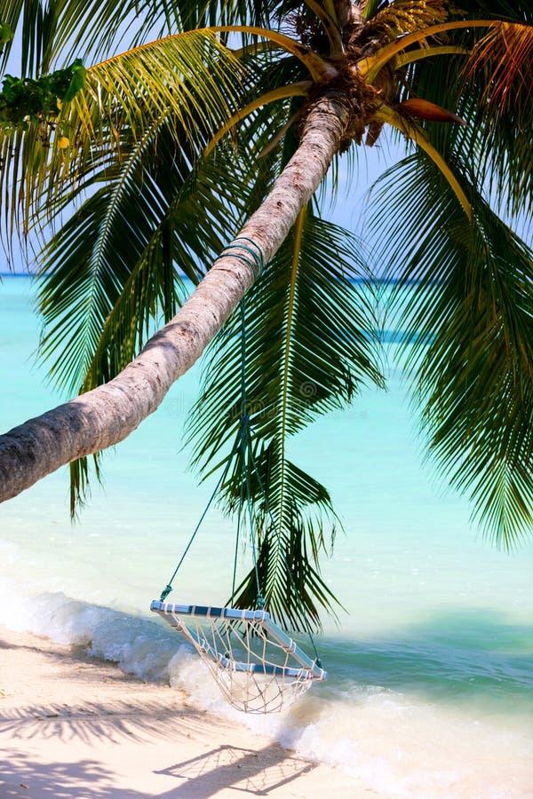 Download пляж тропический стоковое фото. изображение насчитывающей кокос - 40576010