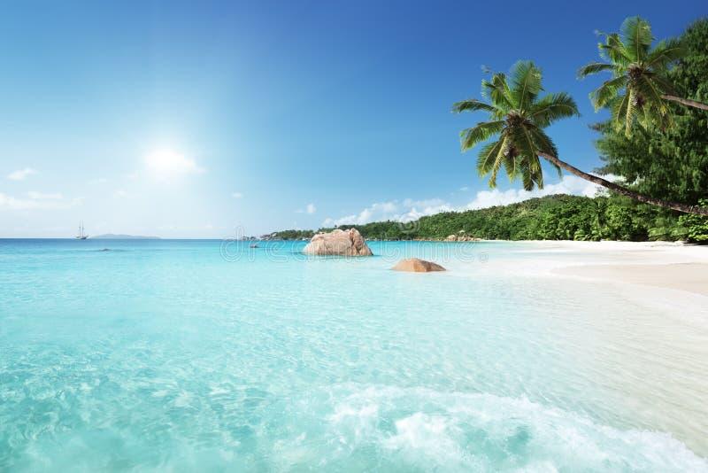 Пляж Anse Лациа на острове Praslin, Сейшельских островах стоковые фотографии rf