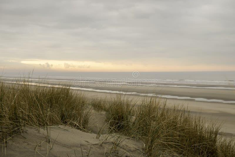 Пляж Bredene в Бельгии стоковые фотографии rf